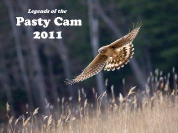 2011 Pasty Cam Calendar