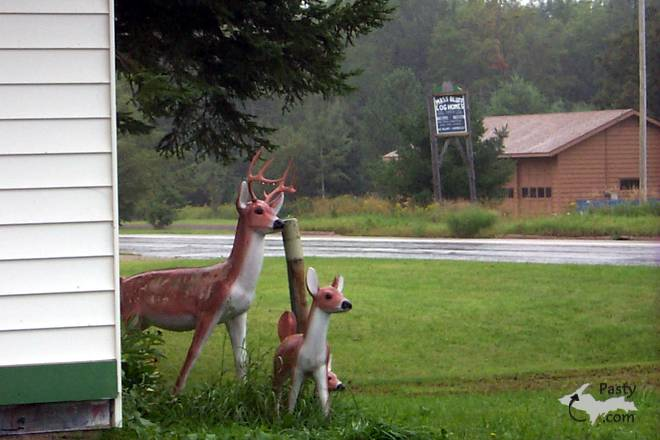 A glimpse of life in Michigan's U.P...