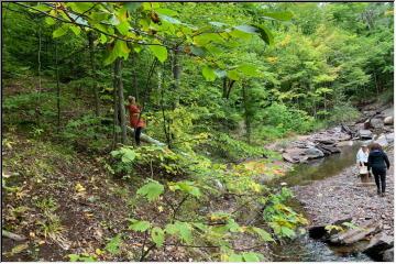Maasto Hiihto Trails