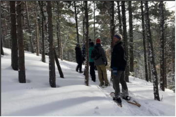 Jacob's Creek snowshoe