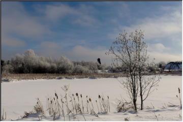 Winter around Swedetown
