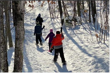 Snowshoeing and sledding
