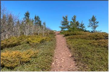 Spring hike
