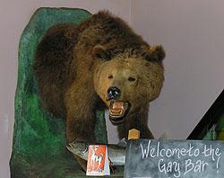 Da Gay Bear