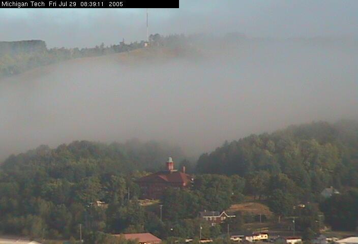 Ripley in the fog #1
